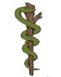 змея на посохе Асклепия