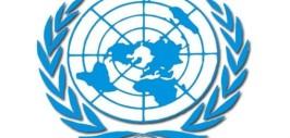 Символика эмблемы и флага ООН