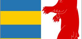 Картинка герба Закарпатья