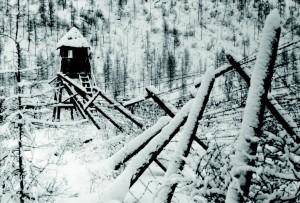 Лагерные развалины сохранились до сих пор