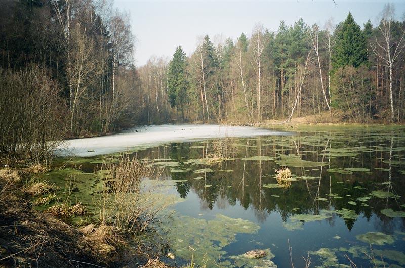 Картинки природы апреля